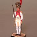 Гренадеры Датского Пехотного полка