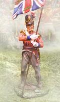 Foot Guards Kings Colors