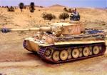 Tiger North Afrika